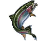 Магнит 176 Rainbow Trout Car Door - Интернет-магазин товаров для рыбалки Эбису, Екатеринбург