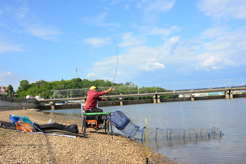 лавка рыбака чебоксары