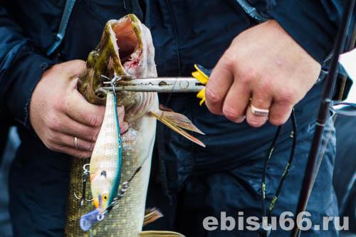 рыболовные магазины эбису в екатеринбурге